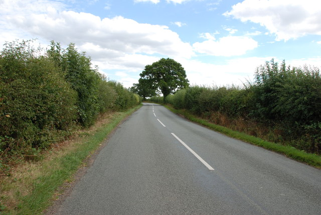 Roman Road heading for the A5