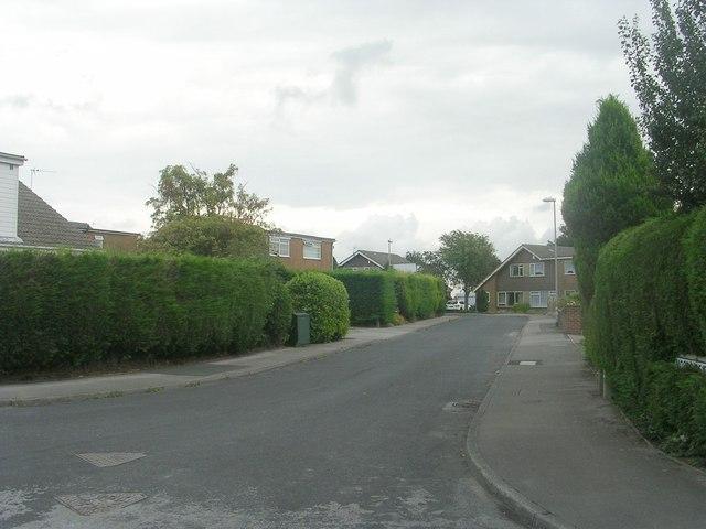 Moorside Crescent - viewed from Moorside Terrace
