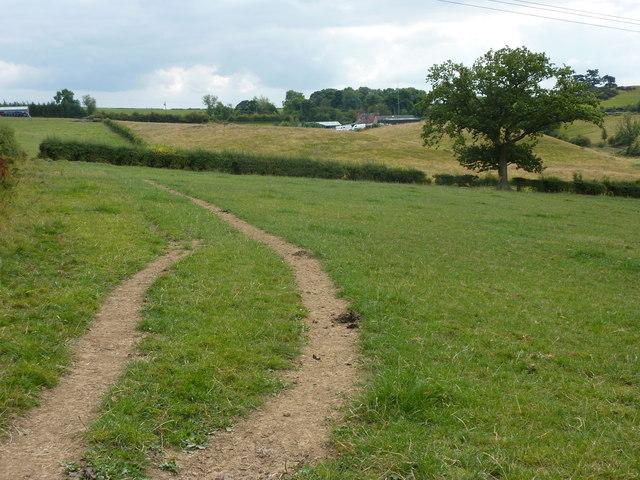 Well worn path