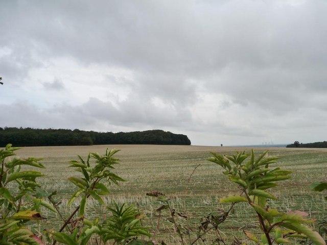 Stubble field north of Wood Field