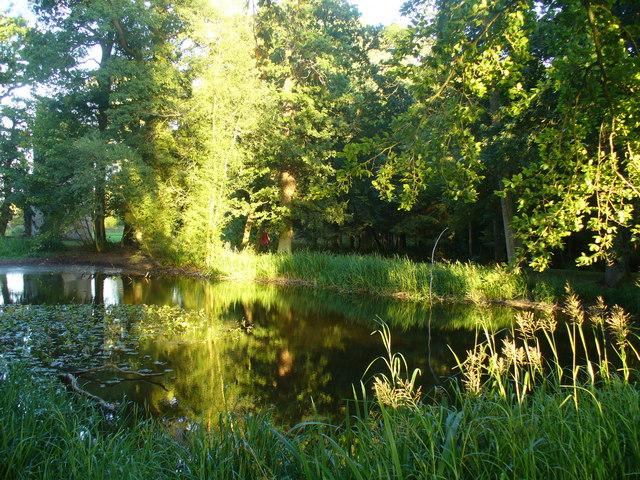 Fish Pond, Minster Lovell Hall