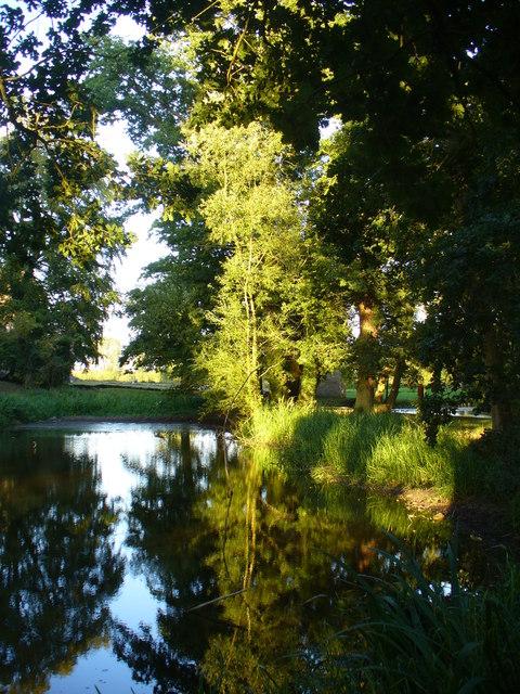 Minster Lovell Hall, Fish Pond