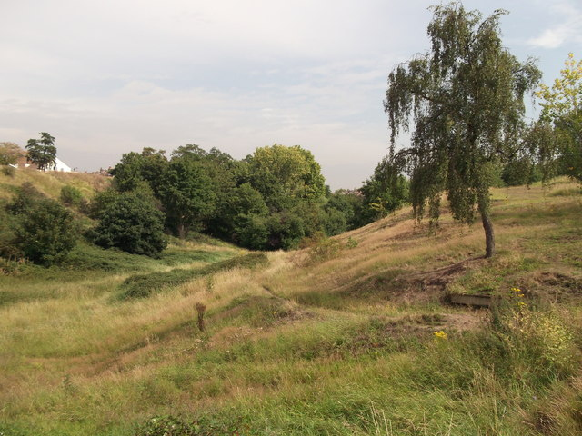 Valley in Plumstead Common