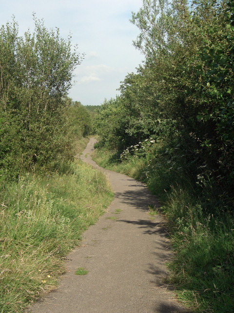 National Cycle Route 4 at Parc Slip Nature Park