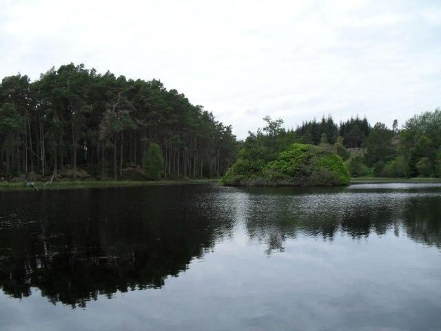 Lochan in Carbisdale Woods