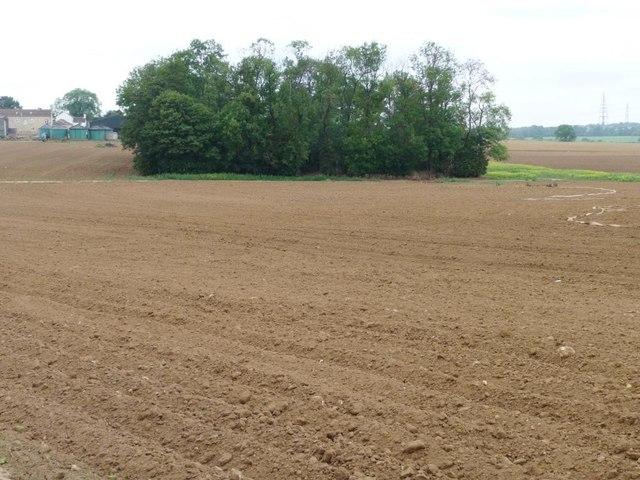 Warren Plantation