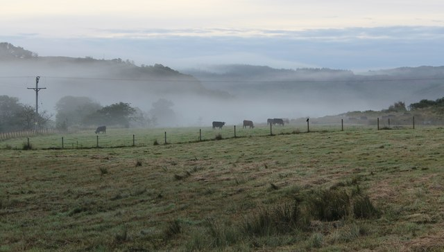 Rough pasture, Dunadd