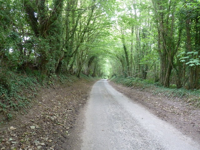 Unnamed lane south to West Dean