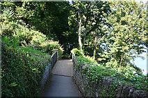 SS7249 : Lynton: crossing the cliff railway by Martin Bodman