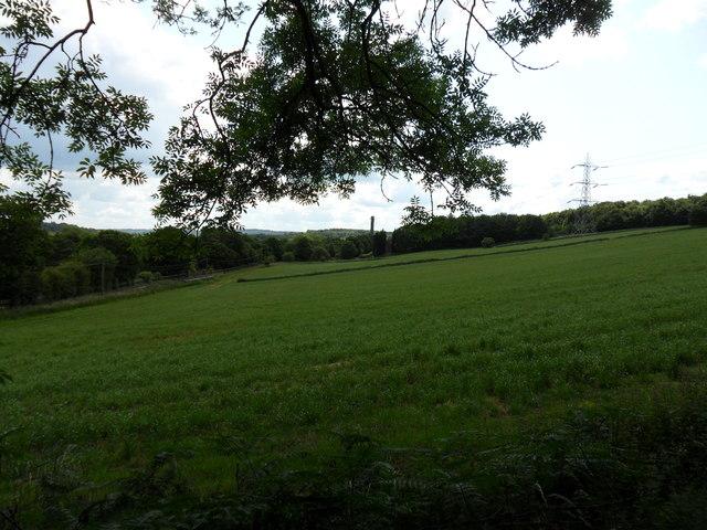 Greenfields just north of Bradley Estate