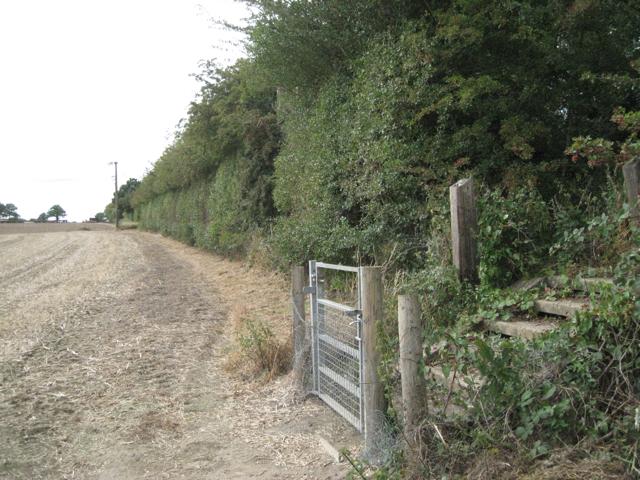 Line of dismantled railway