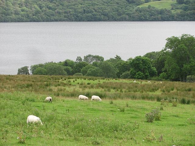 Fields above Loch Tay