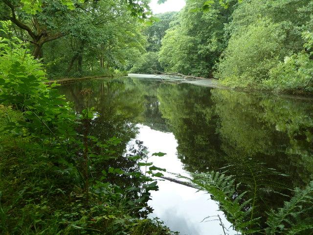Wolf Wheel Mill pond