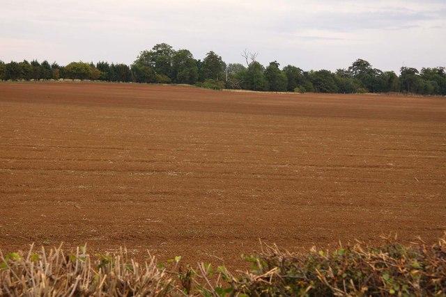 Ploughed field near Mount Pleasant Farm