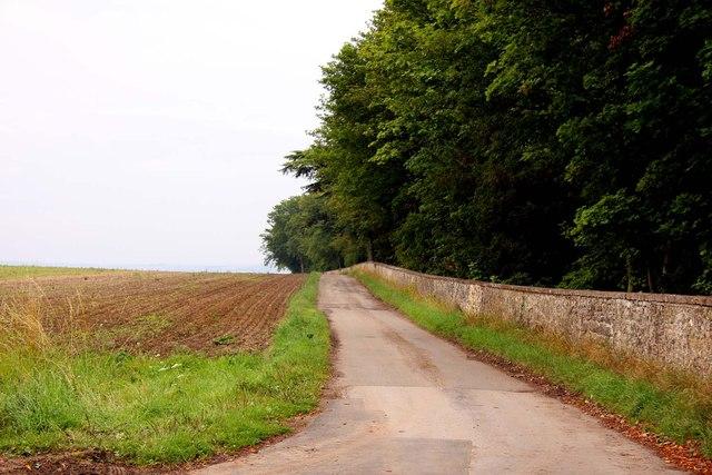 The road to Ashen Copse Farm