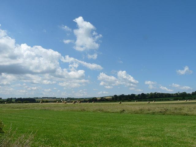 Farmland near Stoneshiel