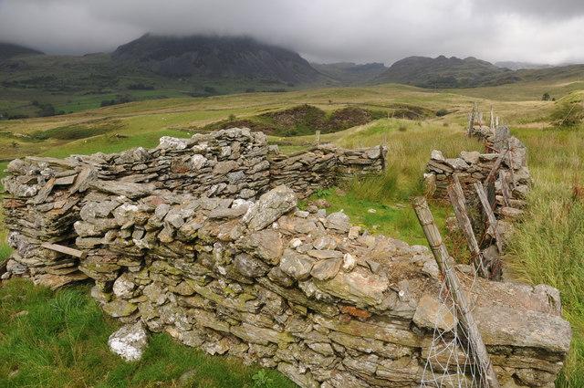 Sheep fold beside the B4391