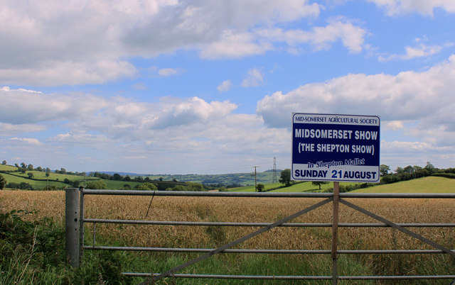 2011 : Gate to a wheatfield south of Shepton Mallet