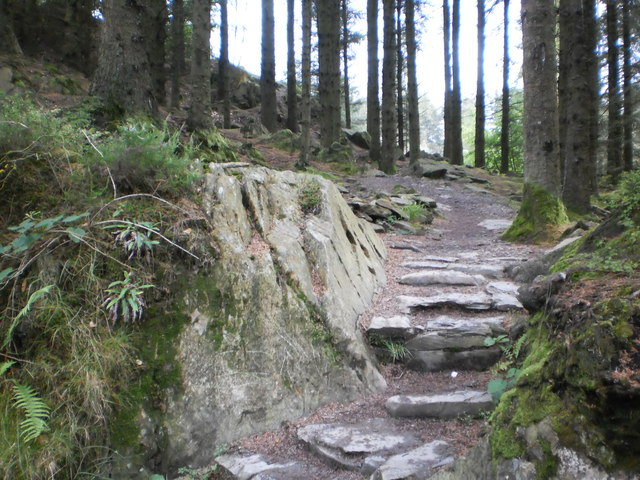 Approach to Grizedale Tarn