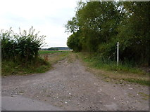 SO8398 : The bridleway leaving Bennetts Lane by Richard Law