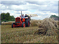 SK6248 : Harvesting with reaper and binder - 6 by Alan Murray-Rust