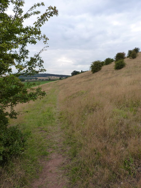 Bridleway towards The Clive