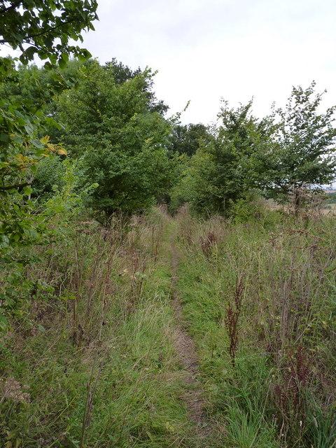 Bridleway between Rudge and Chesterton