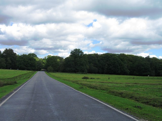 Country road east of Minstead