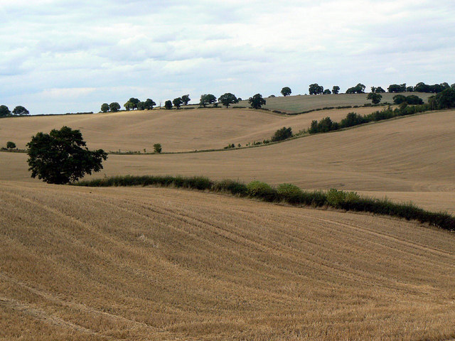 Landscape near Woodborough Park