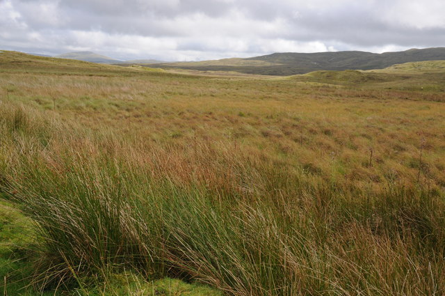 Moorland drained by Nant y Groes