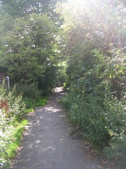 Ellar Carr Road - Park Road