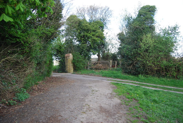 Track off North Lane near Lidham Hill Farm
