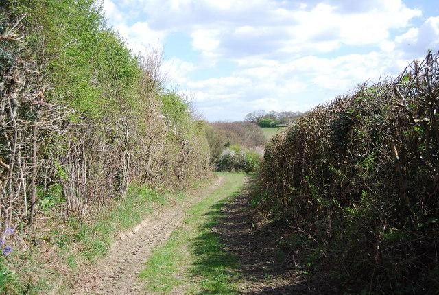 1066 Country Walk, Lower Lidham Hill Farm