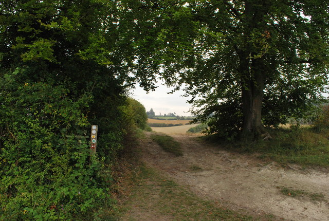 Footpath from Pirton to Pegsdon Hills