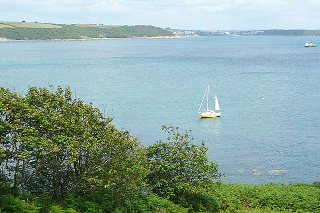 Looking over Falmouth Bay