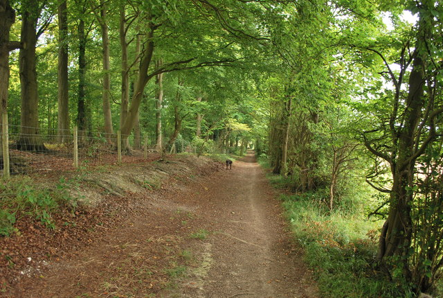 Path alongside the privately owned woodland