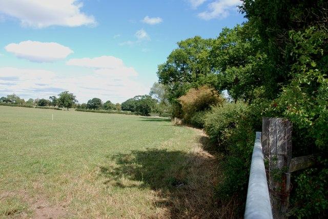 Along the Hedgerow towards Gnosall Heath