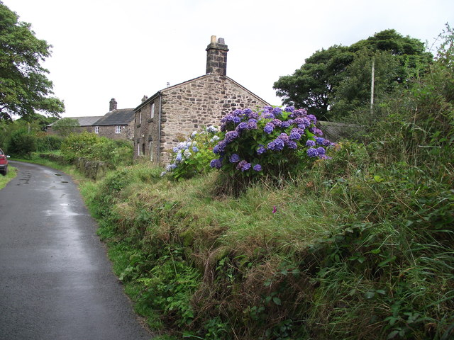 Cottages on Duxon Hill