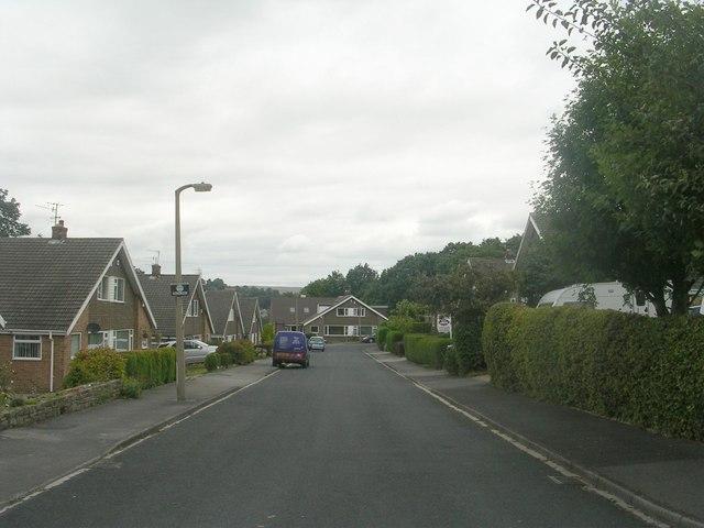 Brackendale Avenue - Windhill Old Road