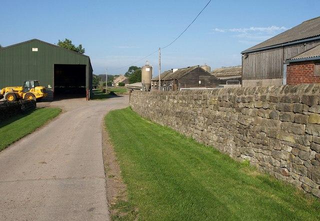 Prospect Farm