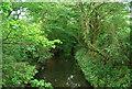 TQ2171 : Beverley Brook by N Chadwick