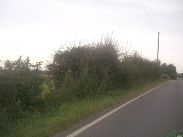 Selsey Road between Sidlesham and Donnington