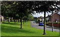 J2868 : Laurel Way, Seymour Hill, Dunmurry by Albert Bridge