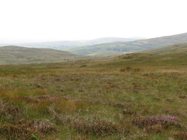Upland Bog between Slieve Croob and Slievenisky