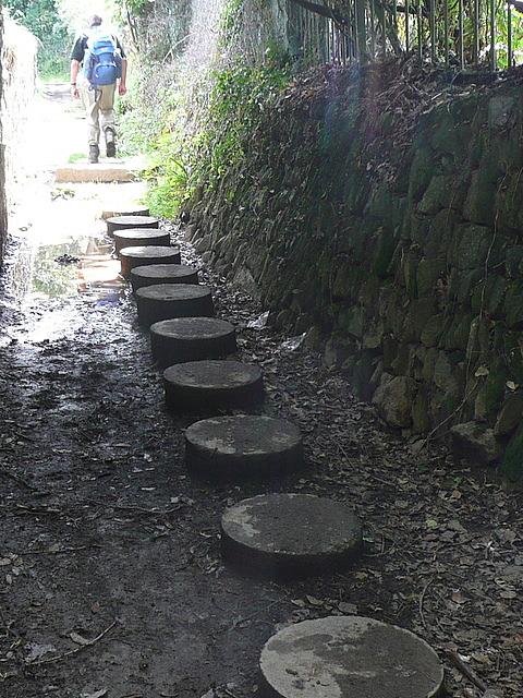 Path at Polgwidden Cove