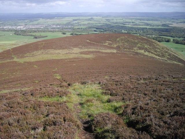 Grain Hill