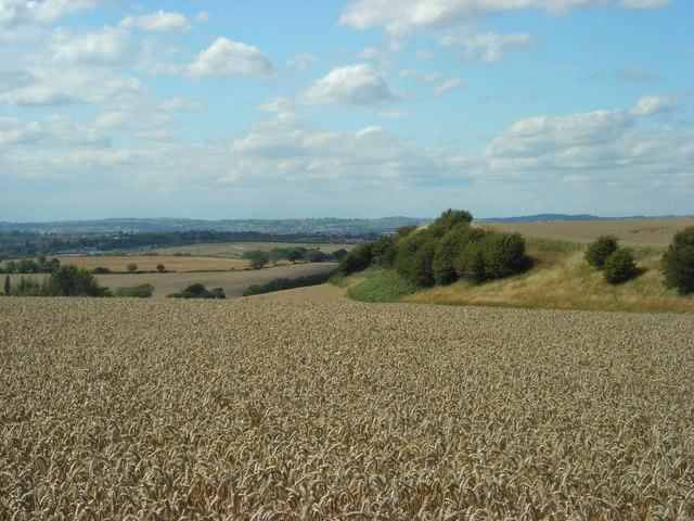 Boar Hill