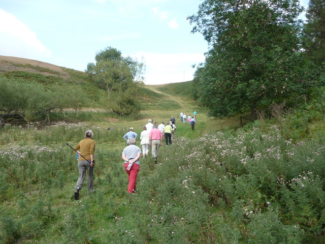 Walking on a summer evening in the Teme valley