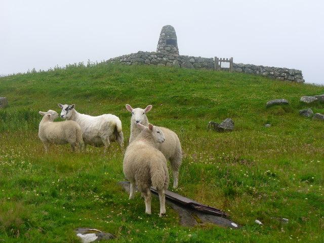 Sheep Grazing at Milton