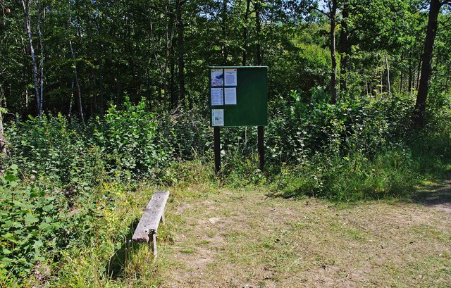 Seat and noticeboard, Trench Wood, near Sale Green